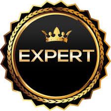 expert-badge